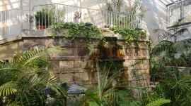 Kaupungin puutarha
