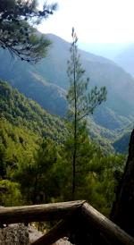Jylhä Kreetan maisema
