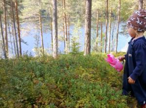 Marjanpoimija Järvi-Suomessa